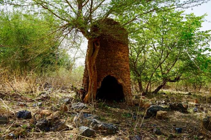 Le four de Nimpoui, village du Centre-Nord du Burkina, a été «découvert» il a une dizaine d'années par l'un des premiers archéologues ouest-africains, Jean-Baptiste Kiéthéga.