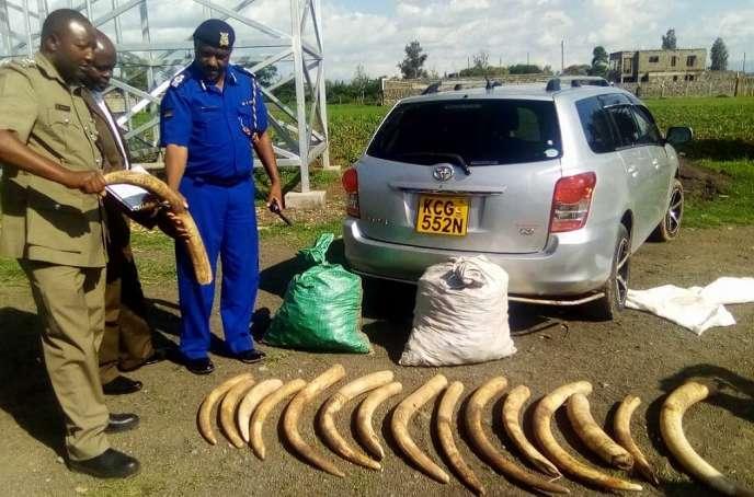 Des défenses d'éléphants saisies au Kenya