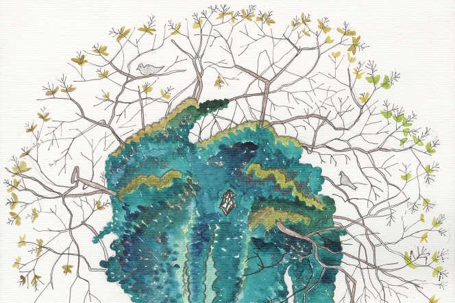 Extrait de carnet, «Sophora Japonica» (2019).