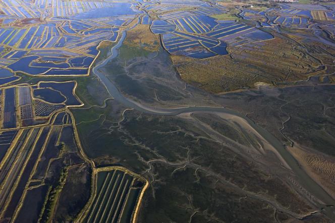 Vue aérienne de la réserve naturelle nationale de Lilleau des Niges, en Nouvelle-Aquitaine.