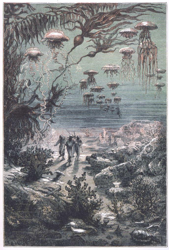 «Paysage sous-marin de l'île Crespo», illustration d'Alphonse de Neuville dans«Vingt mille lieues sous les mers», de Jules Verne.