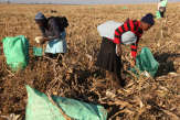 Pour la troisième année d'affilée, la faim progresse dans le monde