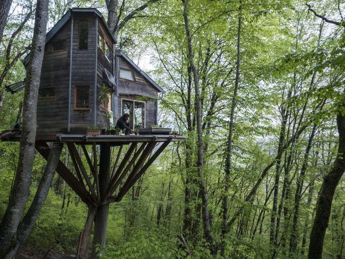 Xavier Marmier et sa compagne, Line, vivent dans une cabane à plus de 7 m de haut, à Cléron (Doubs).