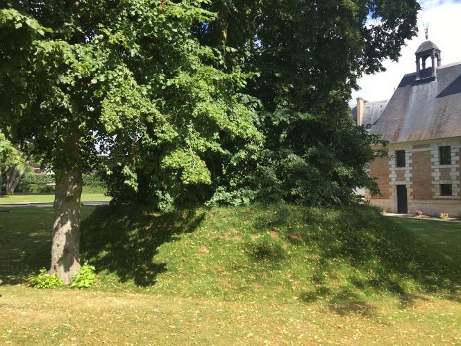 « Vallée», l'installation végétale de Nils-Udo, dans le parc du Centre d'art contemporain de la Matmut.