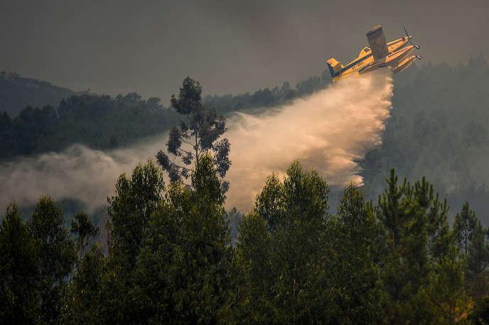 Un Canadair lutte contre un incendie dans le centre du Portugal, le 21 juillet.