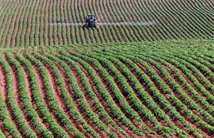 CETA : comment le Canada tente de saper les normes européennes sur les pesticides et les OGM