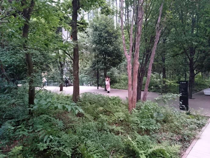 La « forêt urbaine » du quartier d'affaires d'Otemachi, à Tokyo, conçue en 2009 par Michel Desvigne, photographiée ici en 2016.