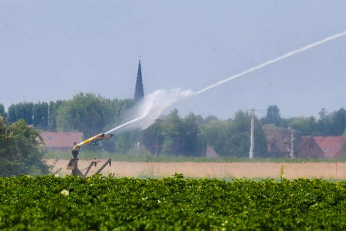Le Nord (ici près de Lille, le 17 juillet) et le Pas-de-Calais sont situés dans des zones fortement touchées par l'aléa « retrait-gonflement des argiles ».