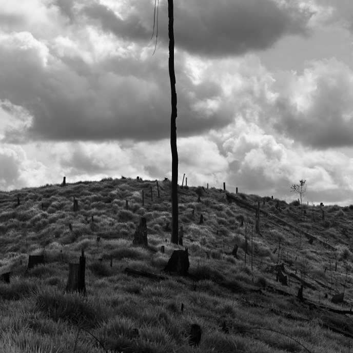 Photography: Ludovic Careme's other Brazil