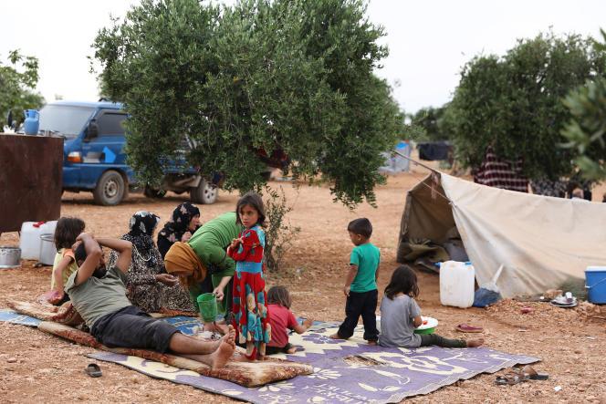 Des Syriens qui ont fui les bombardements dans la province d'Idlib ont trouvé refugedans une oliveraie près du village d'Aqrabat, à la frontière turque, le 31 mai 2019.
