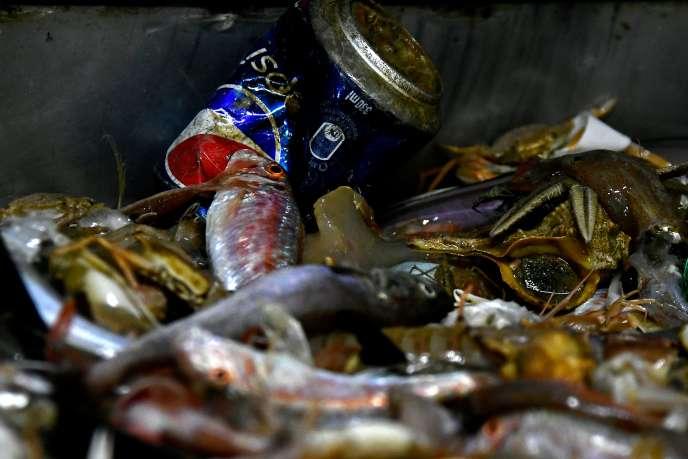 «Surproduction, suremballage, tout jetable, obsolescence programmée… Ces aberrations ont un lourd impact sur l'environnement et nos sociétés. » (Photo: déchets en mer au large deSan Benedetto del Tronto, Italie, en mai.)