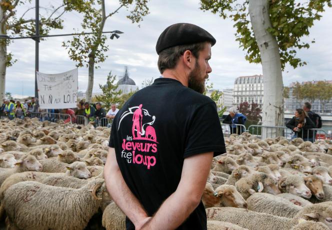 Manifestation d'éleveurs anti-loups, à Lyon, en 2017.