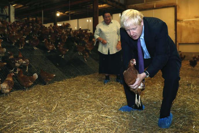 Le premier ministre britannique, Boris Johnson, dans une ferme avicole du Pays de Galles, où il a présenté aux éleveurs ses plans pour l'après-Brexit.