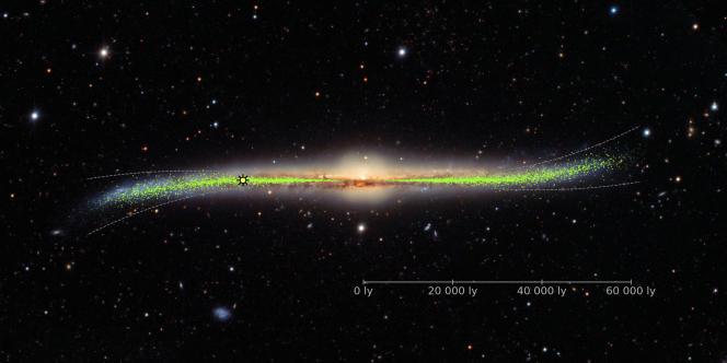Disque galactique, vu de profil,avec ses déformations montrant la répartitiondans la Voie lactée des «jeunes» étoiles, les céphéides (en vert).