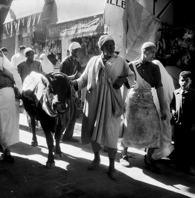 Photographie datée du 10 novembre 1954 prise dans les rues d'Oran lors de la fête du Mouloud, qui célèbre la naissance du prophète Mahomet.