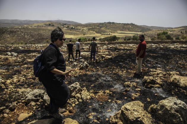 Amira Hass découvre des champs d'oliviers incendiés la veille par des colons israéliens, aux abords du village deJalud, le 7 juin.