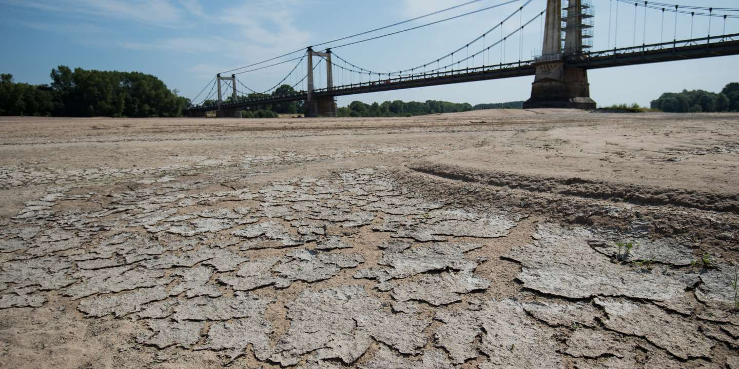 A picture shows a dry part of the bed of the River Loire at Montjean-sur-Loire, western France on July 24, 2019, as drought conditions prevail over much of western Europe. - A new heatwave blasted into northern Europe that could set records in several countries, including France. (Photo by LOIC VENANCE / AFP)