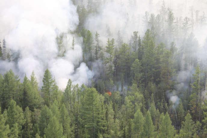 Une forêt dans le district de Boguchansk, dans la région de Krasnoïarsk, en Russie, est en proie aux flammes, le 29 juillet.