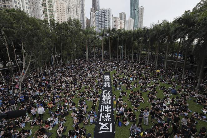 Rassemblement à Belcher Bay Park, à Hongkong, le 4 août, pour demander : « Contre la violence institutionnelle, nous voulons de vraies élections ».