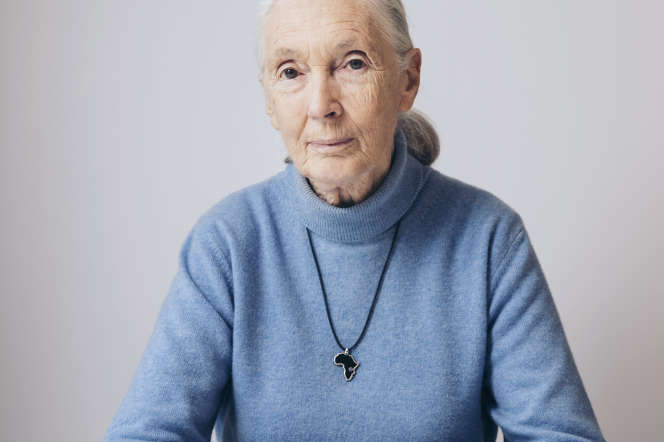 Jane Goodall à New York, en avril 2017.