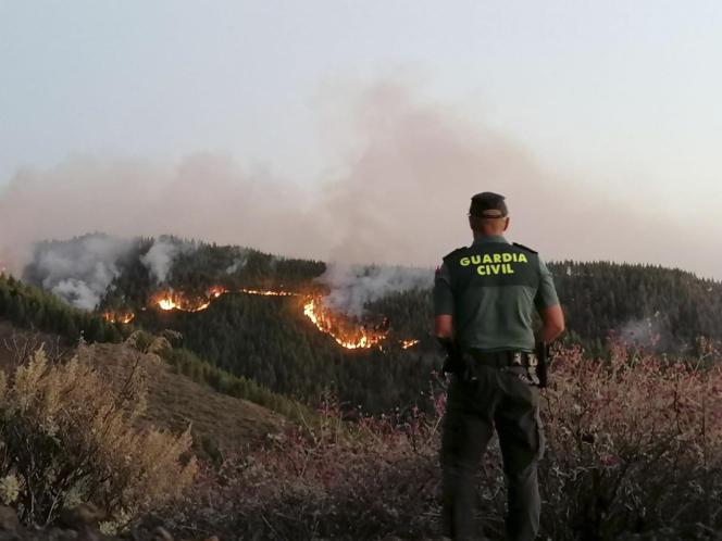 Plus de 200 personnes, dont l'unité militaire d'urgence que l'Etat mobilise sur les feux les plus importants, sont mobilisées sur l'ile de Grande Canarie dimanche 11 août.
