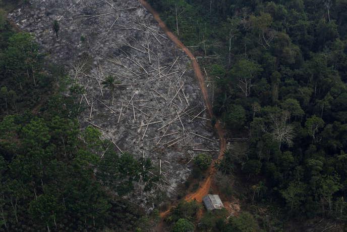 Photo aérienne de la déforestation en Amazonie, le 3 septembre 2015.