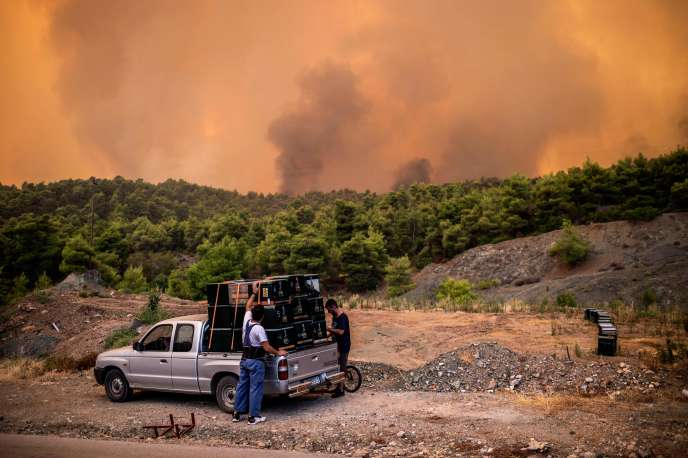 Greek farmers recover their hives in Psachna, threatened by the fire on the island of Euboea, Tuesday, August 13.
