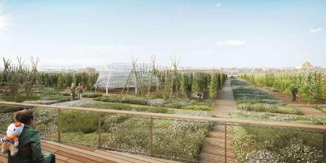 Planète : Toute l'actualité sur Le Monde.fr.La plus grande ferme urbaine d'Europe ouvrira au printemps 2020 à Paris