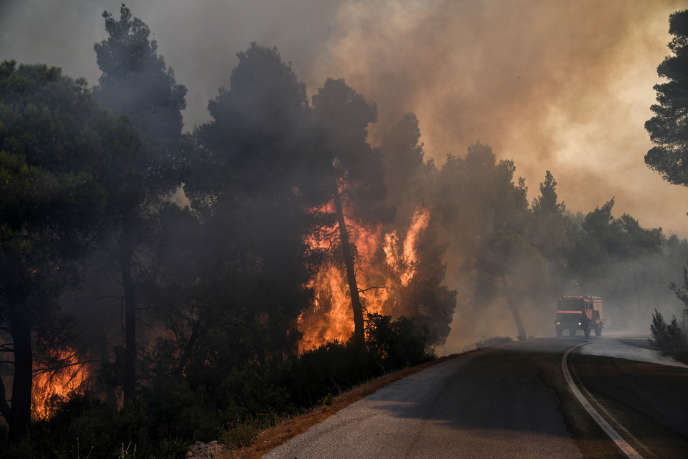 Près du village de Kontodespoti, sur l'île d'Eubée en Grèce, le 13 août.