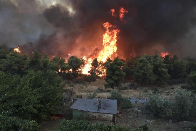 Un habitant du village de Makrimalli tente de contenir l'incendie, sur l'île d'Eubée en Grèce, le 13 août.