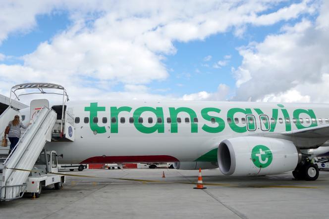Un Boeing 737-800 de la compagnie Transavia à l'aéroport d'Orly.