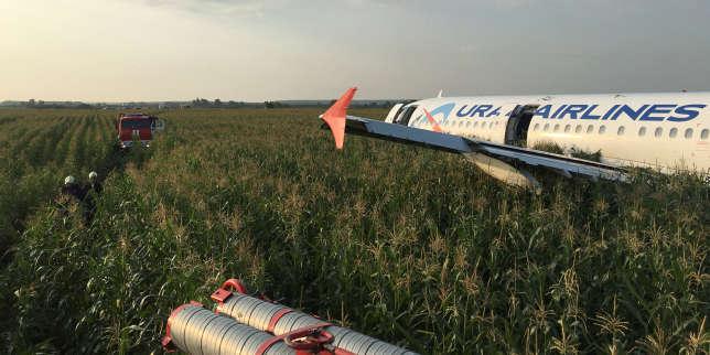 Une volée de mouettes force un Airbus à un atterrissage d'urgence dans un champ de maïs en Russie