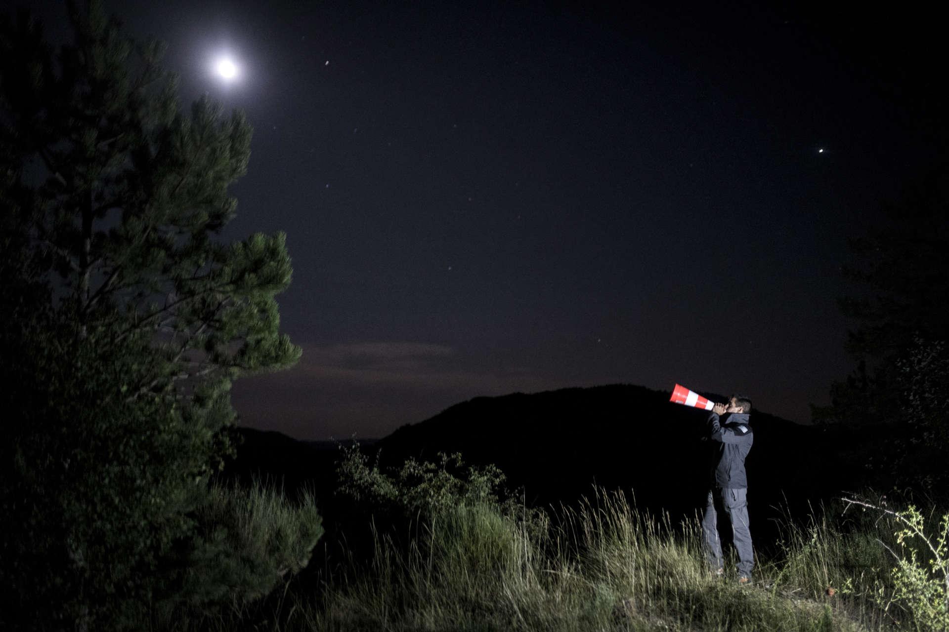 Pour provoquer une réponse du loup, chacun se munit d'un cône de signalisation et imite, à intervalles réguliers, son hurlement. Dans lavallée du Vançon (Alpes-de-Haute-Provence) le 13 août.