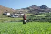 Dans l'Himalaya: «On dirait que quelque chose est déréglé»