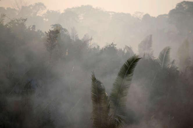 Un feu près de Humaita, en Amazonie (Brésil), le 14 août 2019.