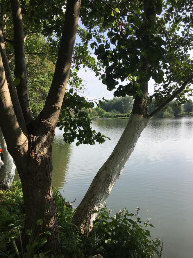 Vue de l'étang de Clermont.