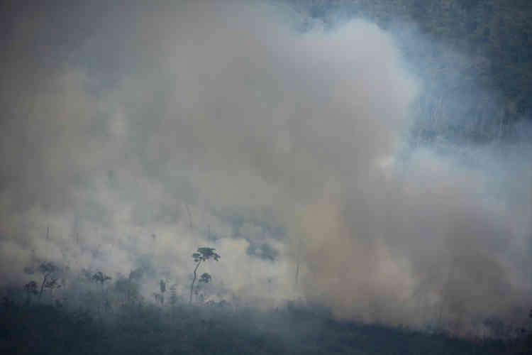 Les feux de forêt sont essentiellement dus à la déforestation, mais aggravés par la saison sèche qui se poursuivra en septembre (ici dans l'Etat du Rondônia, au Brésil).