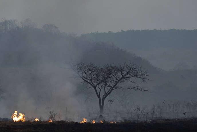 Un incendie dans l'Etat du Mato Grosso, au Brésil, le 23 août.