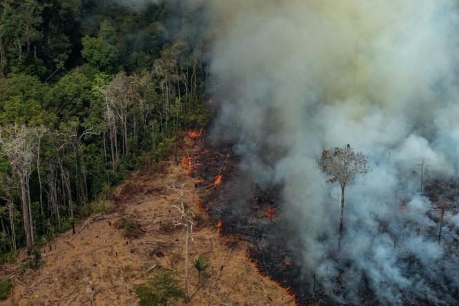 Une parcelle de forêt en train d'être illégalement défrichée par le feu dans la municipalité de Candeias doJamari, au nord-ouest du Brésil, le 24août2019