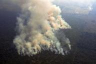 Photo aérienne prise le 23 août, à 65 kilomètres de Porto Velho.