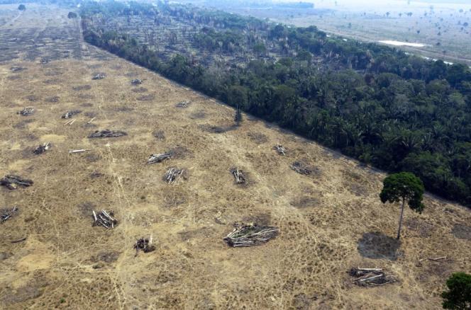 Une zone détruite par les incendies, près dePorto Velho, dans l'Etat du Rondonia, au Brésil, le 24 août.