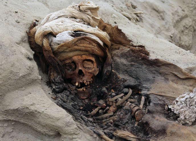 Les restes d'un des 227 enfants découverts sur le site archéologique de Pampa la Cruz, au Pérou.