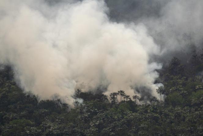 Près de Porto Velho, au Brésil, la forêt en feu le 27 août 2019.