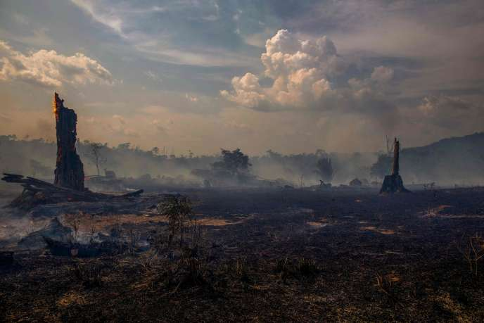 Les incendies en Amazonie, à Altamira, dans l'Etat de Para (Brésil), le 27 août.