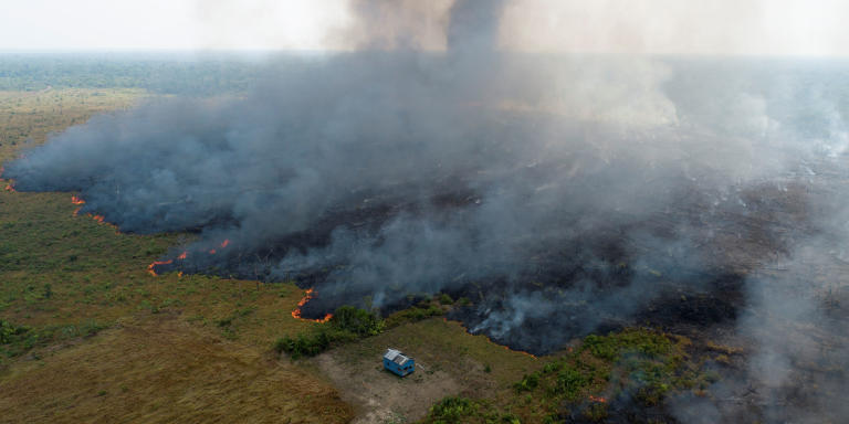 An aerial view shows smoke rising over a deforested plot of the Amazon jungle in Porto Velho, Rondonia State, Brazil, August 27. Picture taken with a drone. REUTERS/Ueslei Marcelino