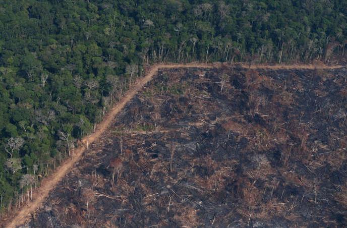 «La carte des départs de feux en Amazonie recoupe sans surprise les bordures entre forêt, champs mis en culture et surtout aires de reproduction des troupeaux de plus de 100000 têtes» (photo : Incendie, près de Porto Velho, Etat du Rondônia, partie haute du bassin de l'Amazone, le 29 août 2019).