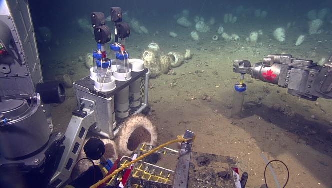 Prélèvement d'échantillons sédimentaires par le rover ROPS sur le plateau continental au large de la Nouvelle-Ecosse (Canada), en septembre 2017.