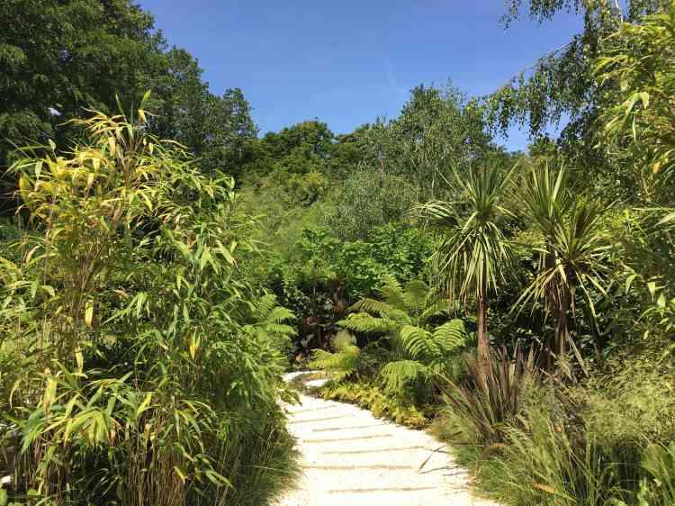 Le paysagiste singapourien, multiprimé dans les concours internationaux, a dessiné un jardin inspiré de lafronde d'une fougère d'argent. Un brouillard d'eau entretient l'humidité de plantes luxuriantes, projetant le visiteur dans une forêt tropicale aussi bénéfique que rassurante.