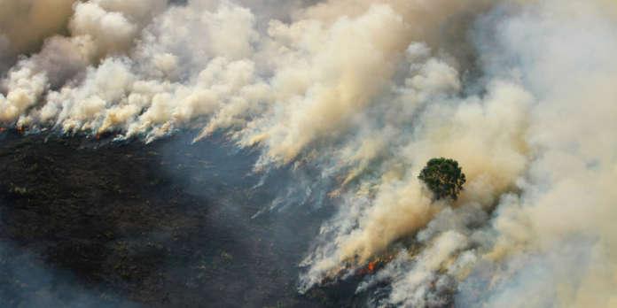 Feux en Indonésie : un nuage de fumée toxique gagne Singapour et la Malaisie