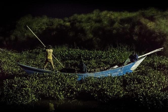 A Dunga Beach, sur les rives du lac Victoria, au Kenya, un pêcheur se fraie un passage en repoussant les jacinthes d'eau.